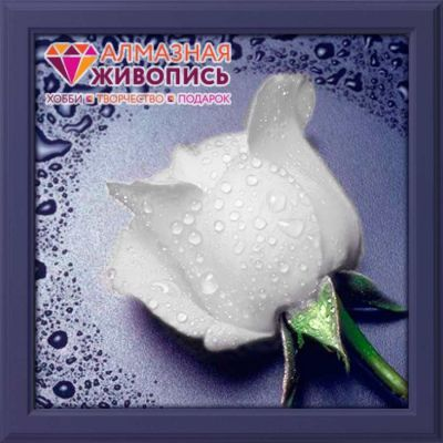 "Diamond painting ""White Rose"" - 22 x 24cm ― Latvian Crafts"